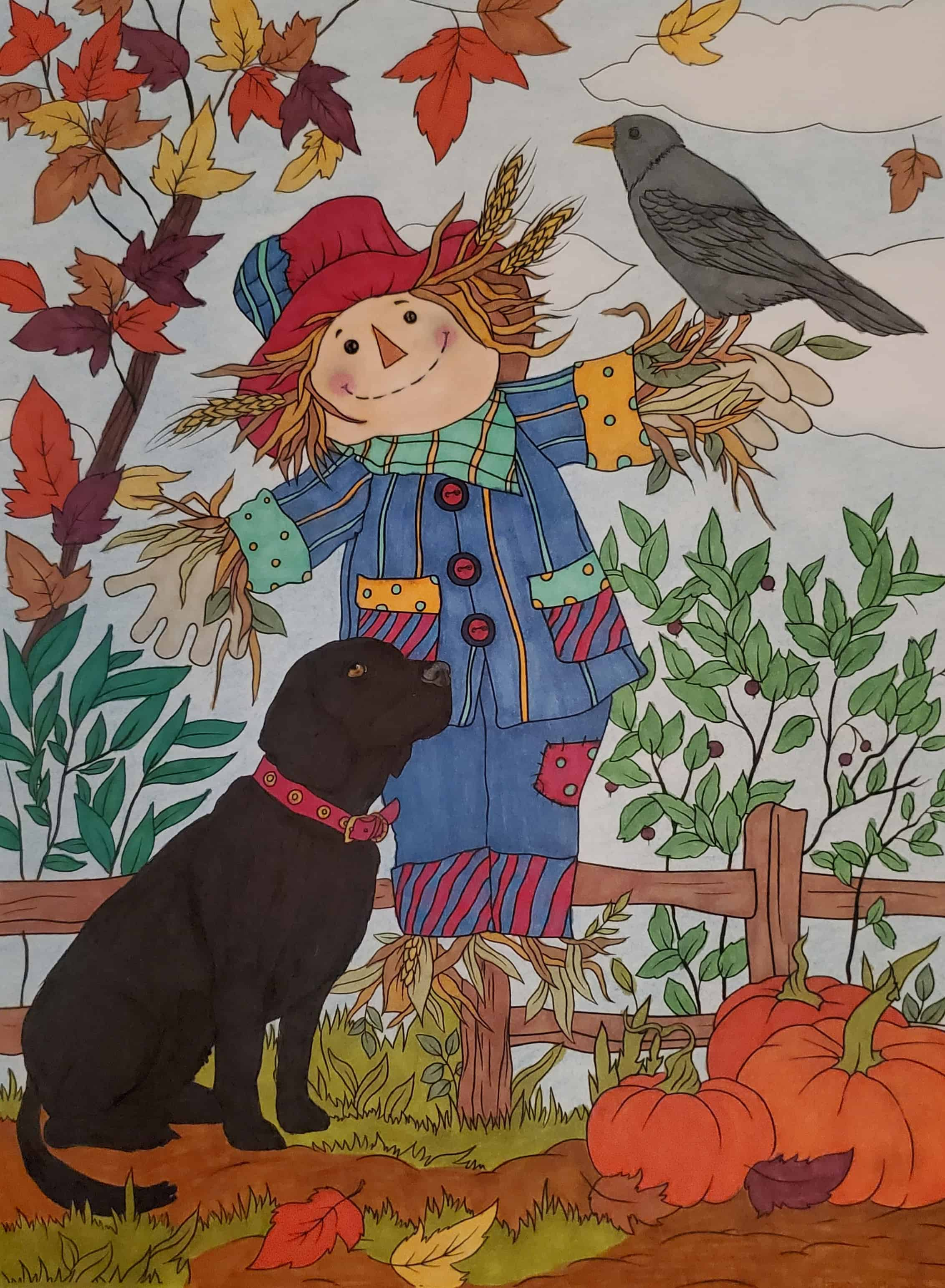 Dog and Scarecrow