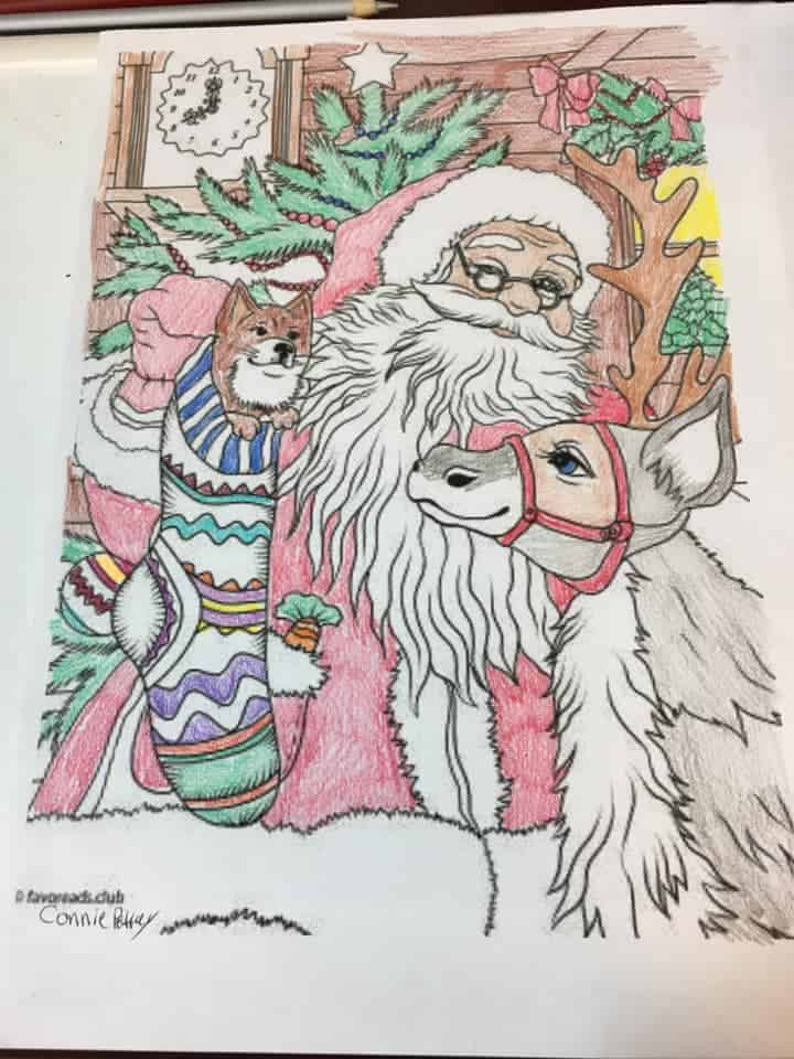 Cats and Dogs – Santa and his Friends