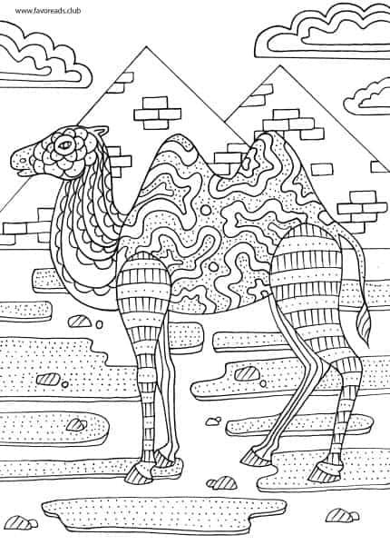Animals and Birds - Camel