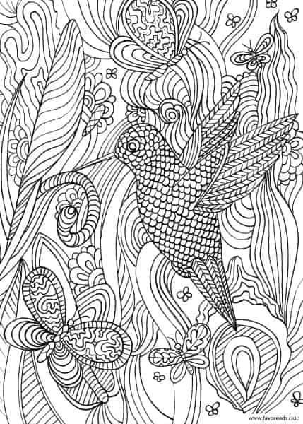 Animals And Birds Colibri Printable Coloring Book