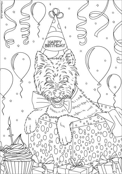 Cats and Dogs - Birthday Dog