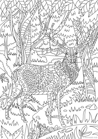 Deer in the Forest Printable Adult Coloring Pages from