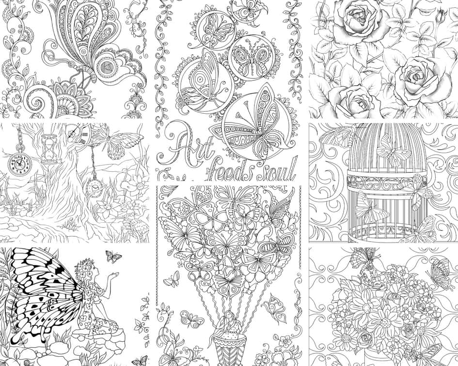 Flowers and Butterflies - 10 Coloring Pages