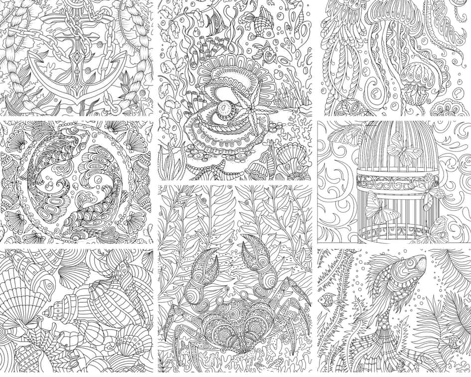 ocean life 10 coloring pages printable adult coloring
