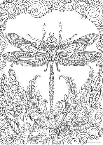 Dragonfly - Printable Adult Coloring Pages from Favoreads