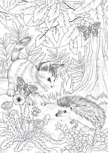Kitty and Hedgehog